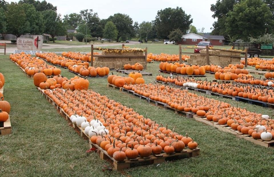 11 awesome pumpkin patches in louisiana.